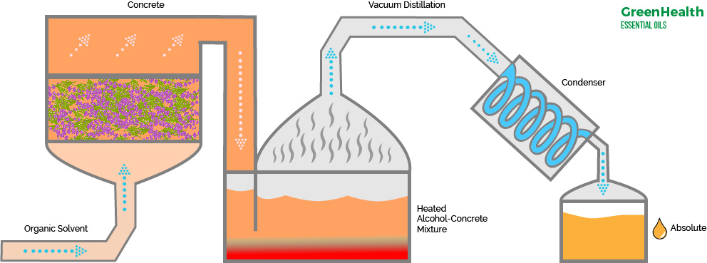 Extraction of organic solvent